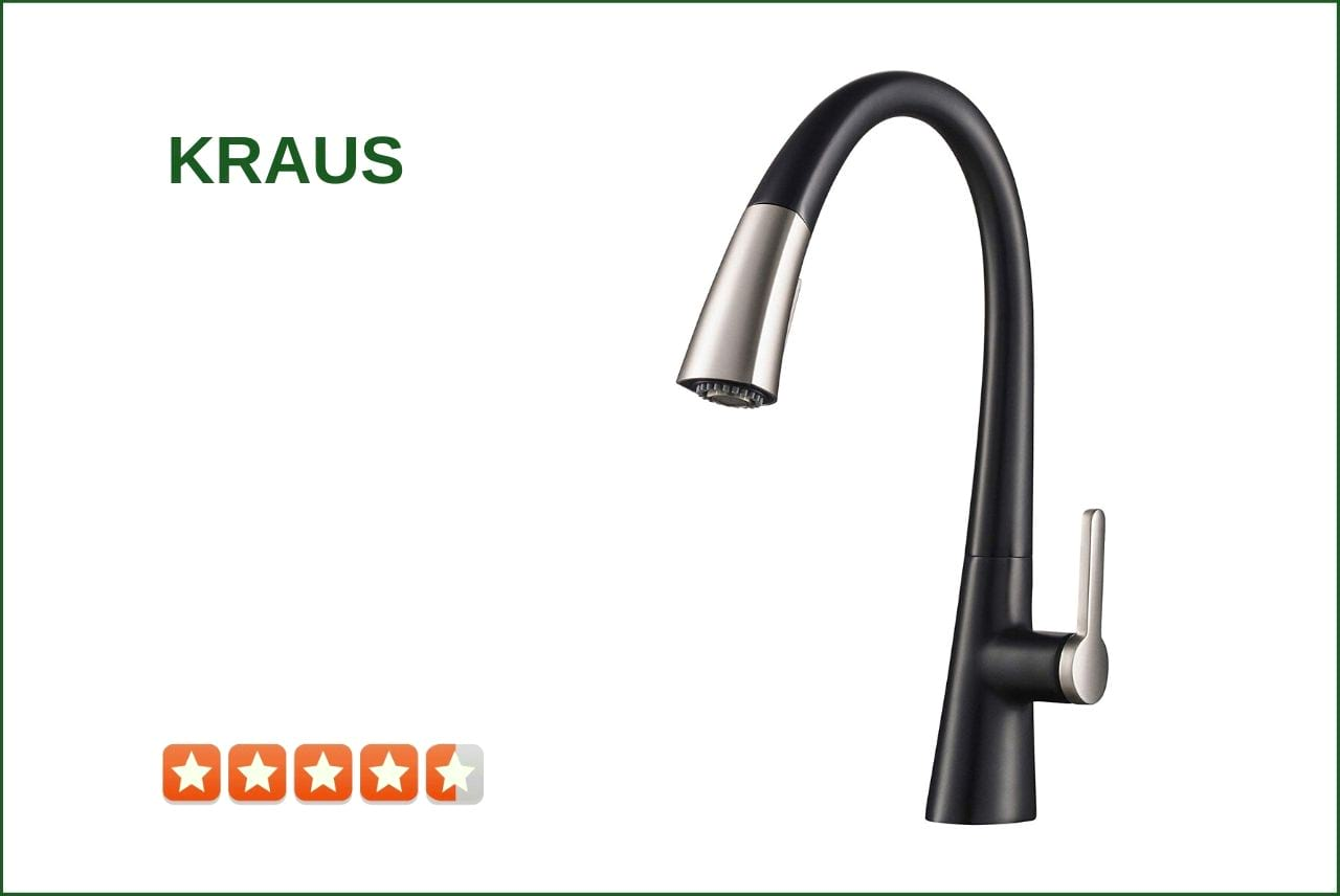Pfister G133-10YY Pull-Out Kitchen Faucet